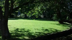 garden at Turfcote